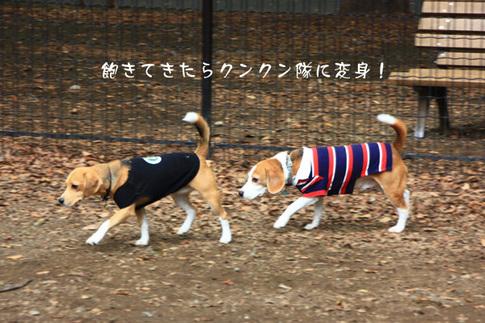 1003代々木公園12.jpg