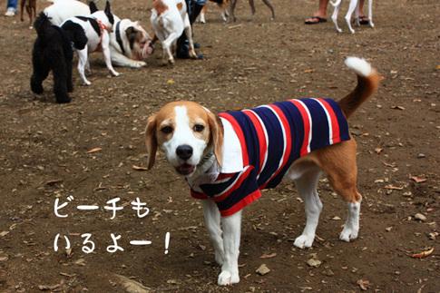 1003代々木公園2.jpg